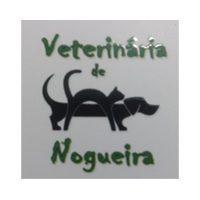 Veterinária de Nogueira